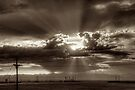 Denver Sunset by njordphoto
