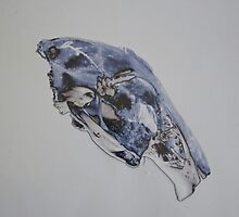 Squirrel skull print experiment  by Sarah Horsman