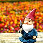 Gnome Field I by thedustyphoenix