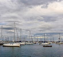 Monroe Harbor by James Watkins