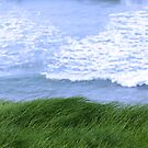 grass on the cliff edge by morrbyte