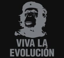 Monkey Che Guevara : Viva la Evolucion - Grey by SpaceRedShirt
