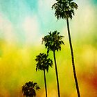 4 Palms by Honey Malek