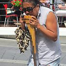 Native pan flute by Mike Shell
