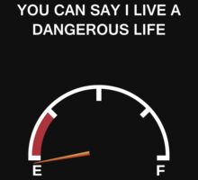 Dangerous Life by Saru2012