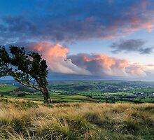 Airedale from Nab End by Simon Bowen