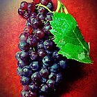 Champagne Grapes ~ Black Vignette by BlueBeauty