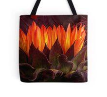 We All Shine On Tote Bag