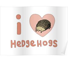 I ❤ Hedgehogs Poster