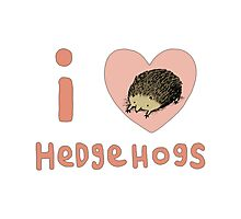 I ❤ Hedgehogs Photographic Print