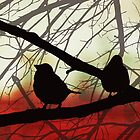 Birds In Shadow by MSRowe Art and Design