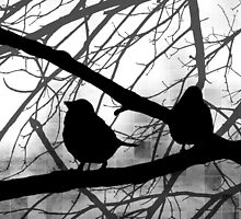 Birds In Shadow - Black and White Version by SRowe Art