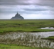 Mont St.Michel ( 3 ) The Flats by Larry Lingard/Davis