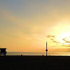 Sunset on Venice Beach by Robert Phelps