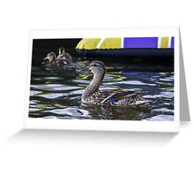 Fine Feathered Mother Duck Greeting Card