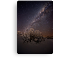 Wintersky Canvas Print