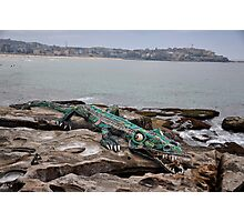 Crocodile @ Sculptures By The Sea, Sydney 2012 Photographic Print