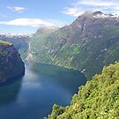 A bend in the Geirangerfjord - Norway by Arie Koene
