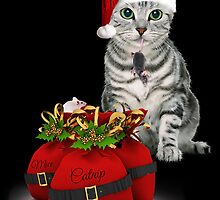 Cat and Mouse Christmas by Doreen Erhardt