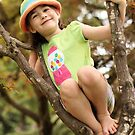 Up a Tree by Tracy Friesen