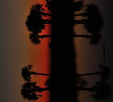 Palms In Crimson After Glow by Zzenco