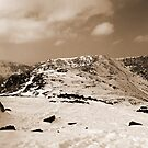 Winter Panorama by mikebov