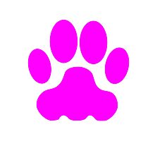 Pink Big Cat Paw Print Photographic Print