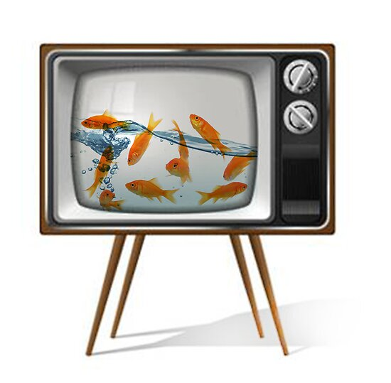 Gold fish tv 02 by vinpez