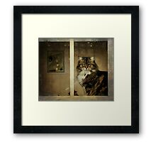 Watching the world go by Framed Print