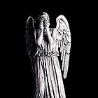 Weeping Angel - Don't Blink Phone Case by MyArtefacts