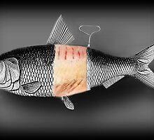 <º))))>< FISH WITH A TWIST PICTURE/CARD <º))))><  by ✿✿ Bonita ✿✿ ђєℓℓσ