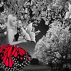 Ƹ̴Ӂ̴Ʒ BUTTERFLY WISHES PICTURE/CARD Ƹ̴Ӂ̴Ʒ by ╰⊰✿ℒᵒᶹᵉ Bonita✿⊱╮ Lalonde✿⊱╮