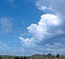 Edge of the storm by Nikki Wentzel