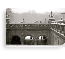 Central Park in Winter Canvas Print