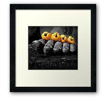 Hot Foot Framed Print