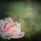 Grace & Gentility by Linda Lees