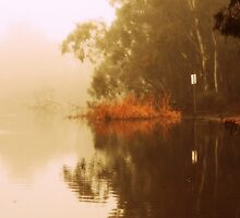 Misty Morning Reflection By Lorraine McCarthy by Lozzar Landscape