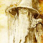 Gandalf by Slaveika Aladjova