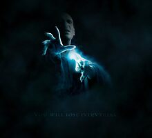 Harry Potter Voldemort - You will lose everything. by alish