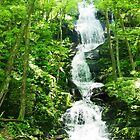 Buttermilk Falls by MsKimberly