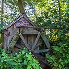 Cider Mill by Allison Waibel