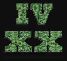 420 Roman Numerals 1 by mob345