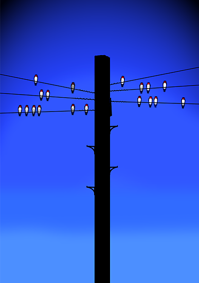 Swallows on a wire by erndub