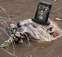 Crazy Screaming Beaver's Hat  by GolemAura