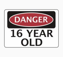 DANGER 16 YEAR OLD, FAKE FUNNY BIRTHDAY SAFETY SIGN by DangerSigns