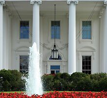 Getting Close To The White House by Cora Wandel