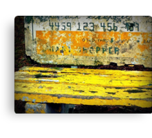 They're Charging A Lot For This Bench... Canvas Print