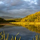 summer evening by the lake by Michael Atkins