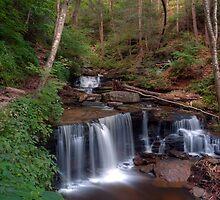 Summer Greenery Graces Delaware Falls by Gene Walls