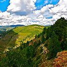 """View from LionsHead Trail"" Minturn, Colorado"" by AlexandraZloto"